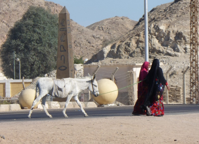 01 201412_22 Travel from Hurghada to Luxor-Ladies with Donkey