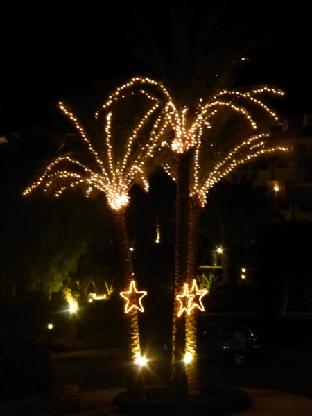 07 201412_20 Christmas lights in Hurghada