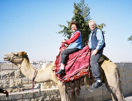 44-110906 Mt. of Olives Camel Rides